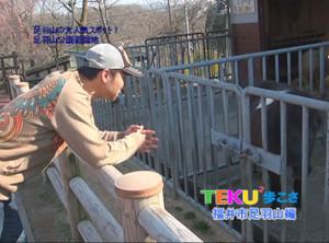 Teku_4
